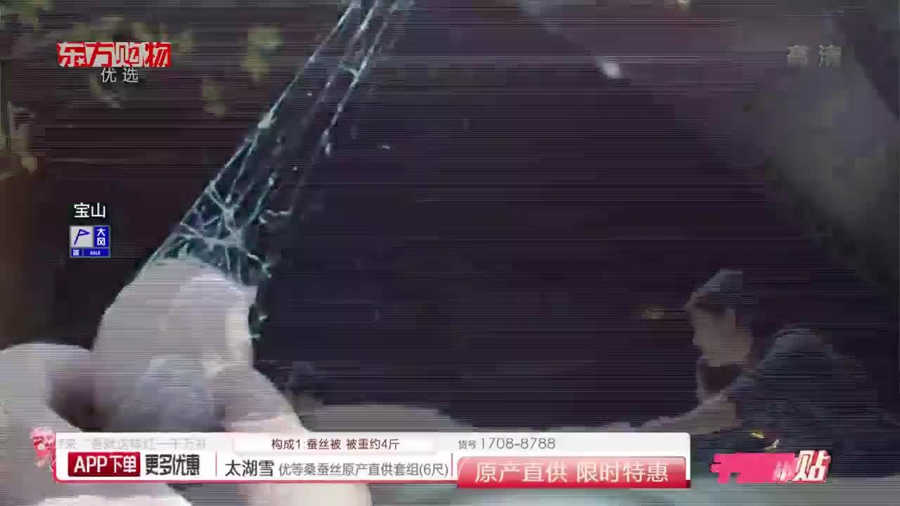 太湖雪 提花優等桑蠶絲被原產直供特惠組(220*240cm)